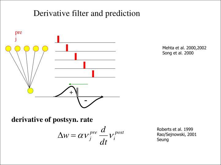 Derivative filter and prediction