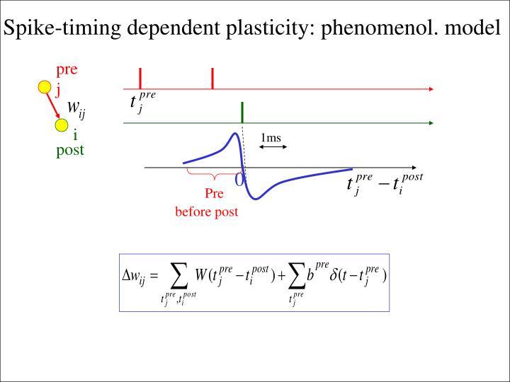 Spike-timing dependent plasticity: phenomenol. model