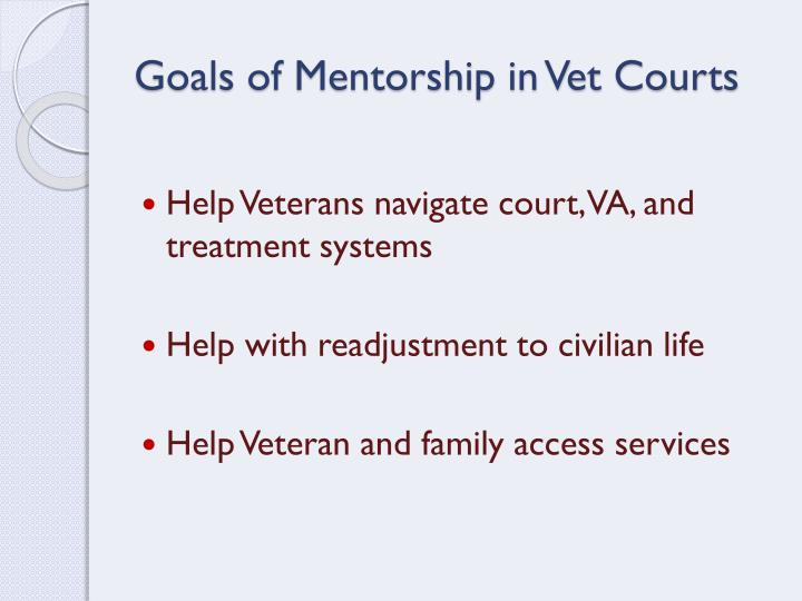 Goals of Mentorship in Vet Courts