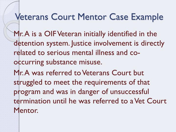 Veterans Court Mentor Case Example