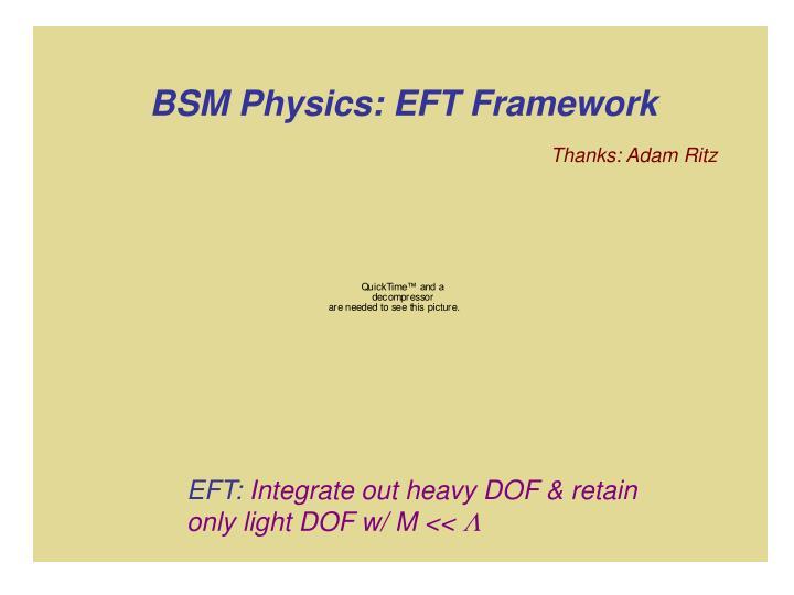 BSM Physics: EFT Framework