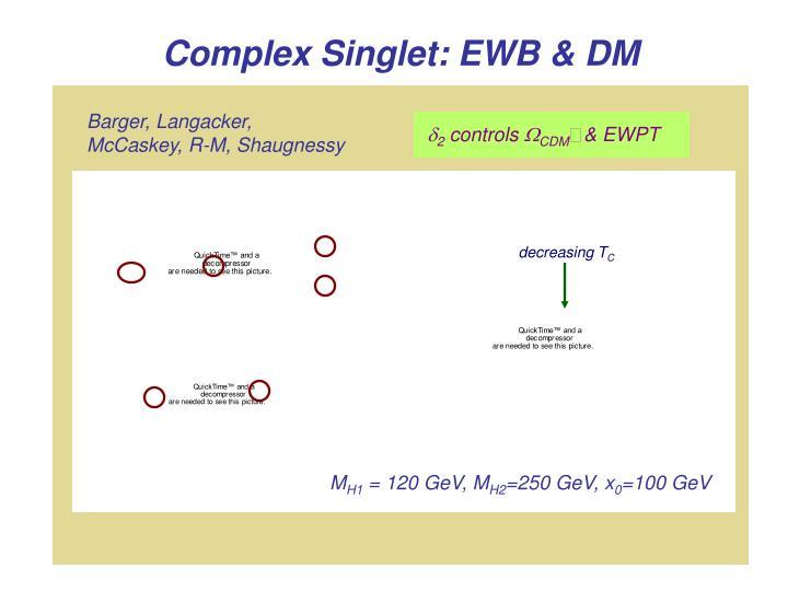 Complex Singlet: EWB & DM