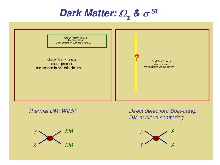 Thermal DM: WIMP