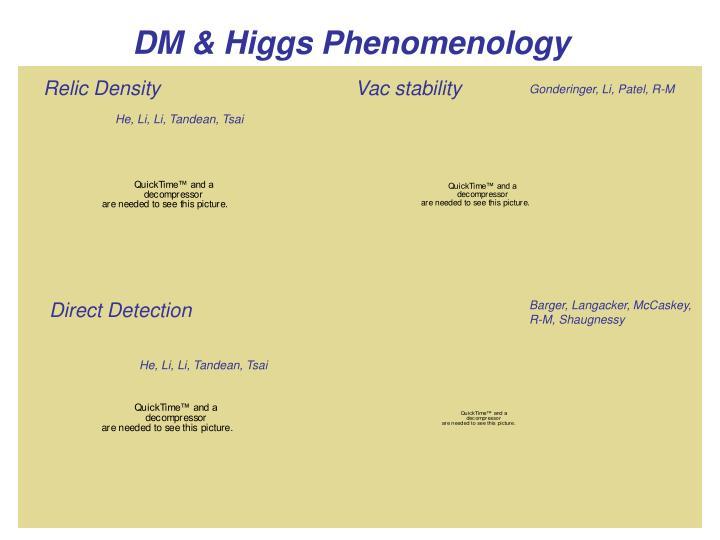 DM & Higgs Phenomenology