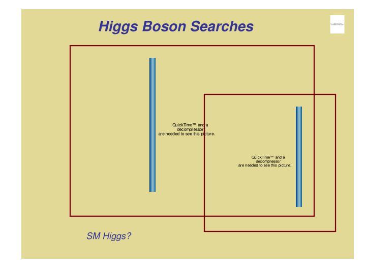 Higgs Boson Searches