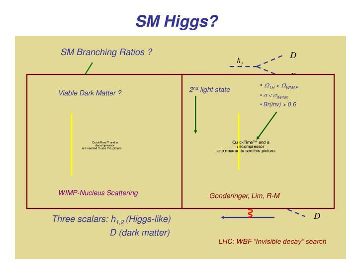 SM Branching Ratios ?