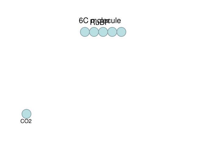 6C molecule