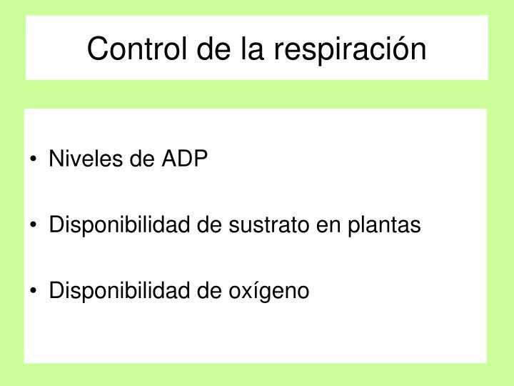 Control de la respiración