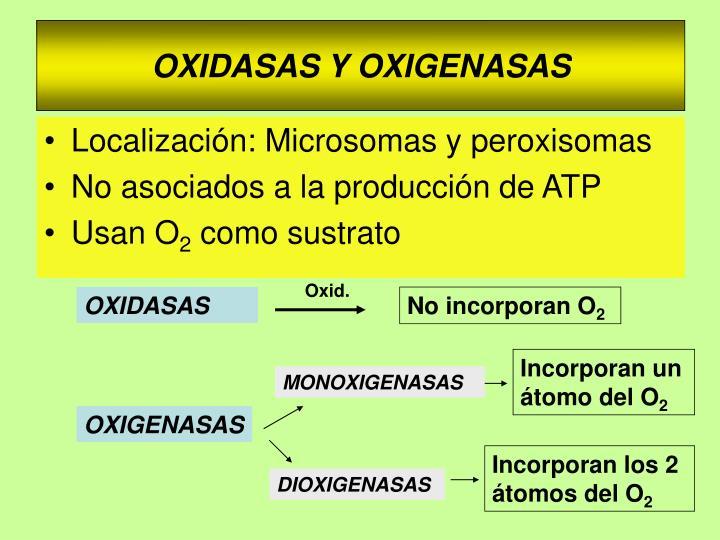 Oxid.