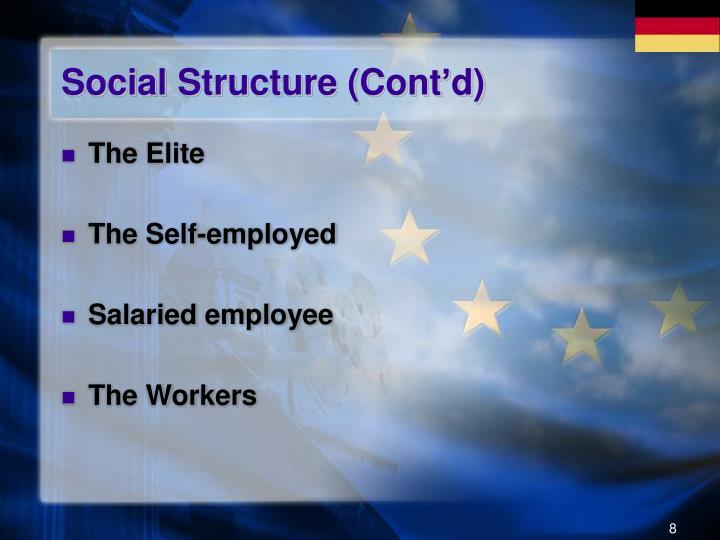 Social Structure (Cont'd)
