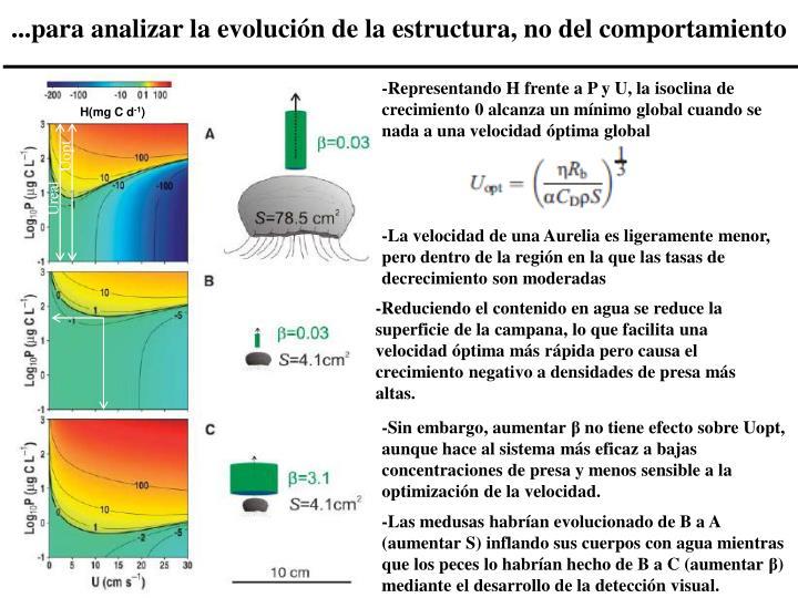 ...para analizar la evolución de la estructura, no del comportamiento