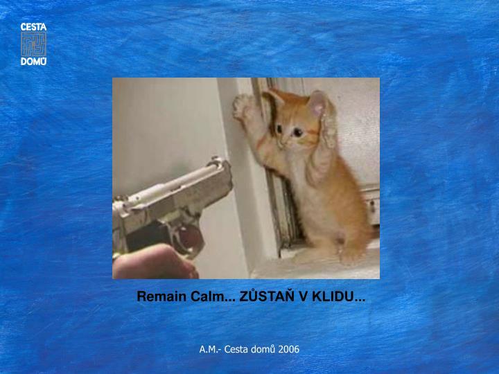 Remain Calm...