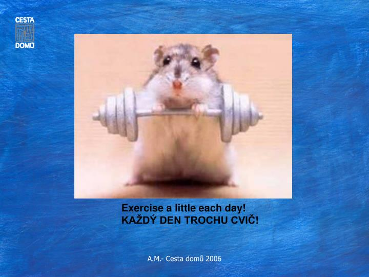 Exercise a little each day!