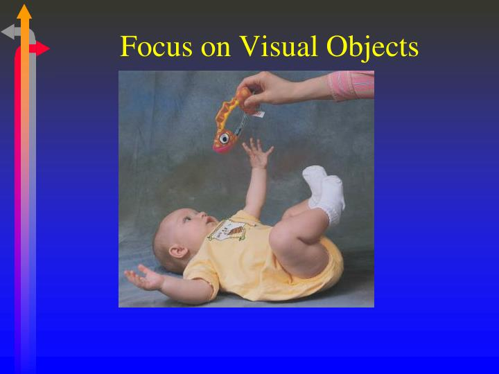 Focus on Visual Objects