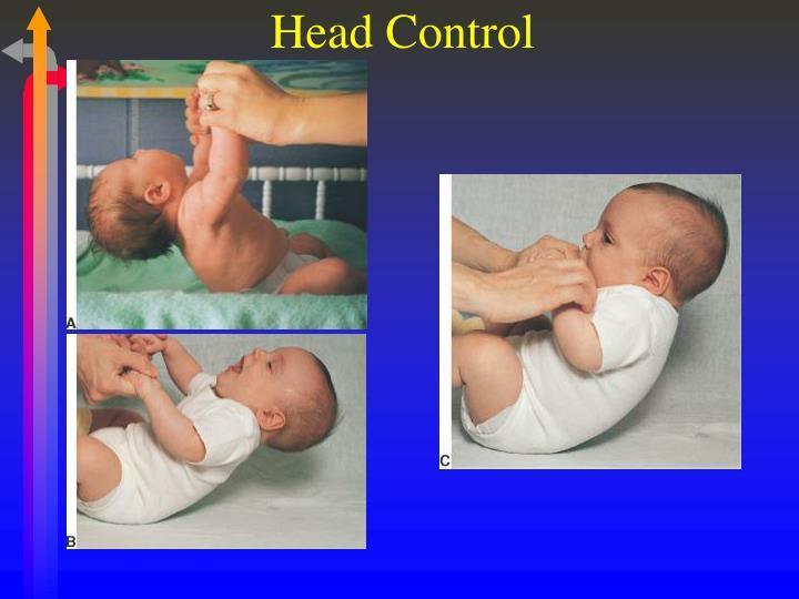 Head Control