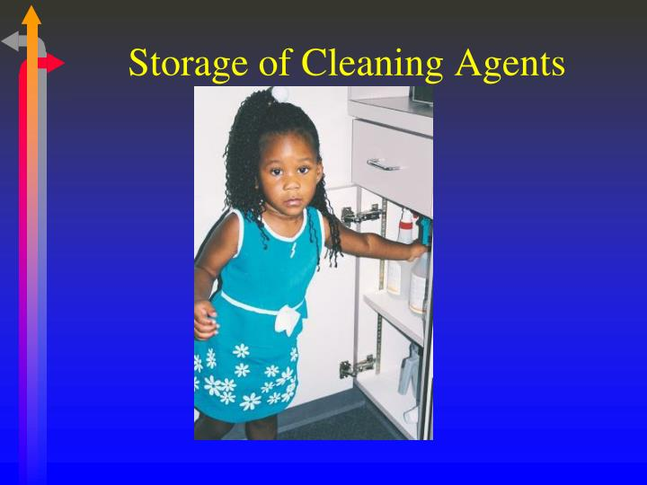 Storage of Cleaning Agents