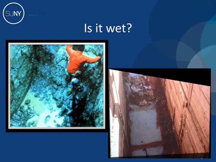 Is it wet?
