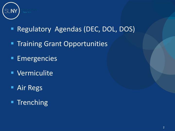 Regulatory  Agendas (DEC,
