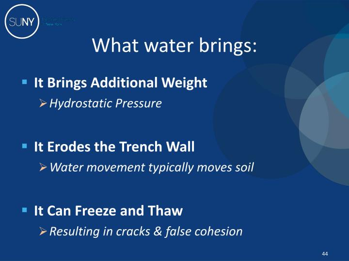 What water brings: