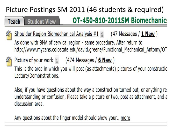 Picture Postings SM 2011 (46 students & required)