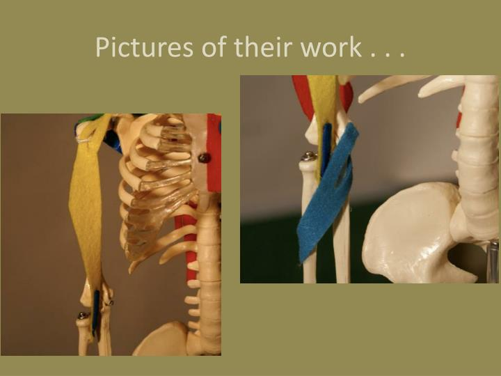 Pictures of their work . . .