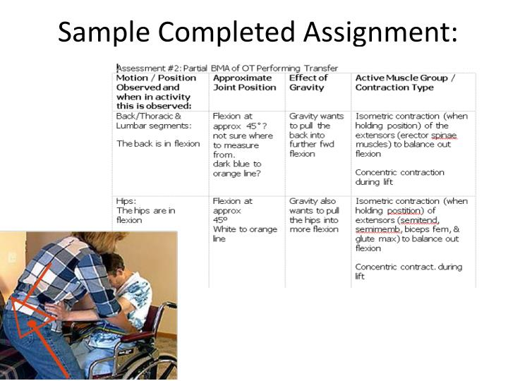 Sample Completed Assignment: