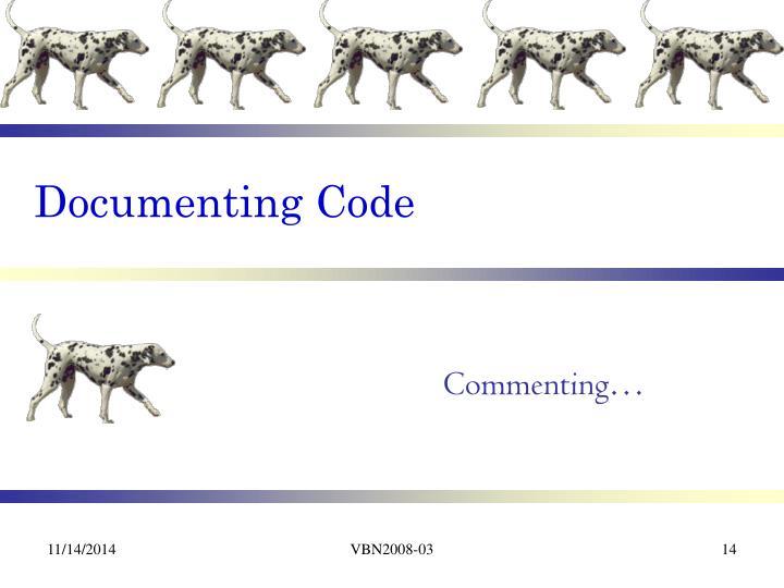 Documenting Code