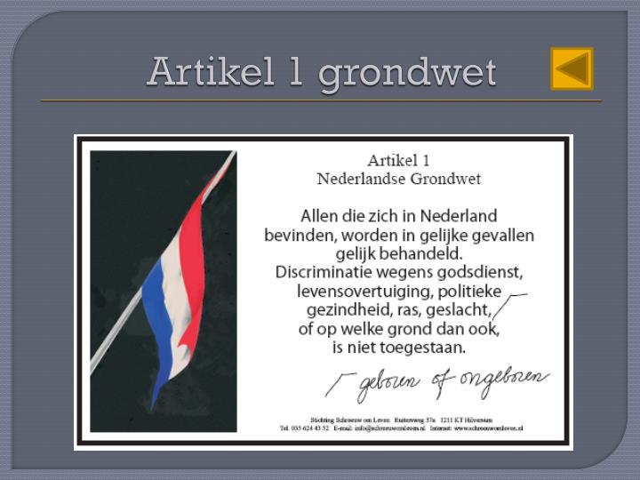 Artikel 1 grondwet