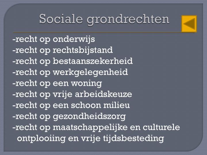 Sociale grondrechten