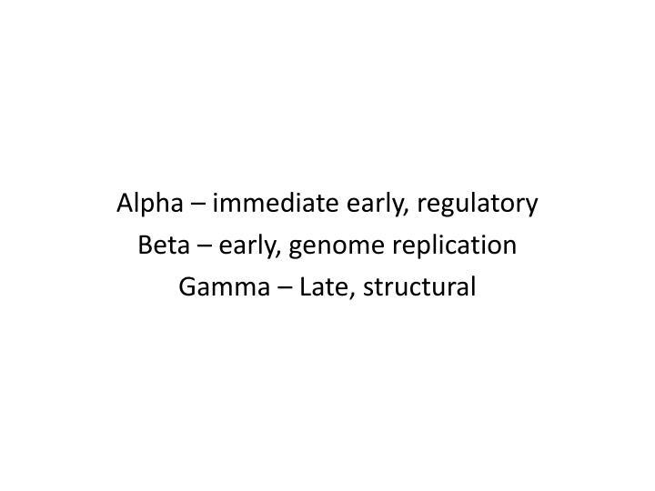 Alpha – immediate early, regulatory