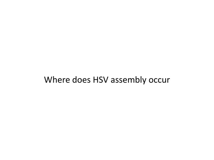 Where does HSV assembly occur