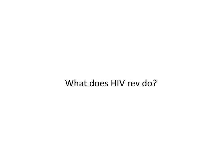 What does HIV rev do?