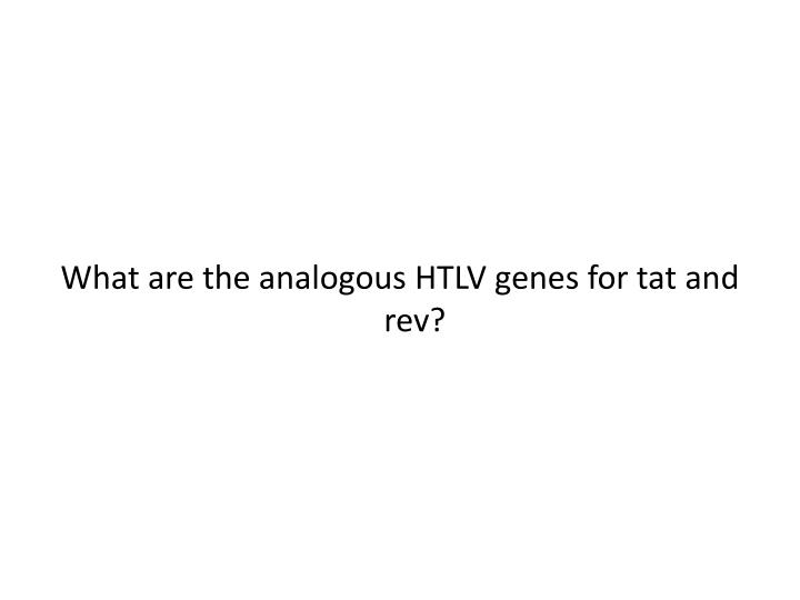 What are the analogous HTLV genes for tat and rev?