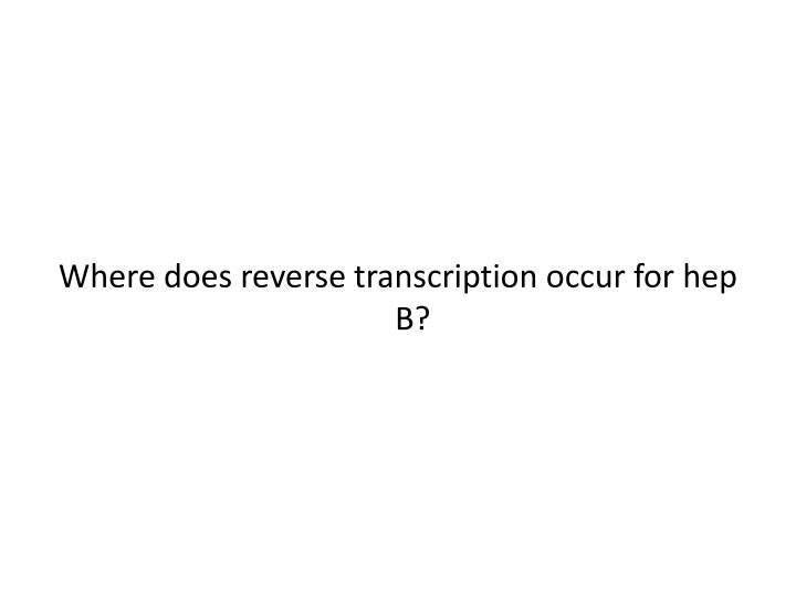 Where does reverse transcription occur for