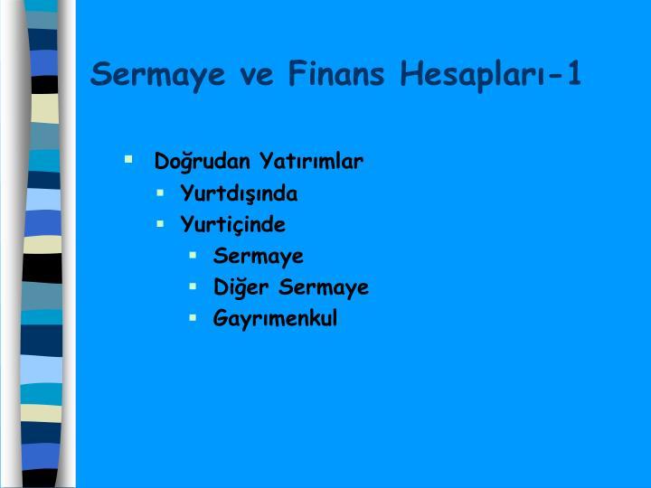 Sermaye ve Finans Hesapları-1