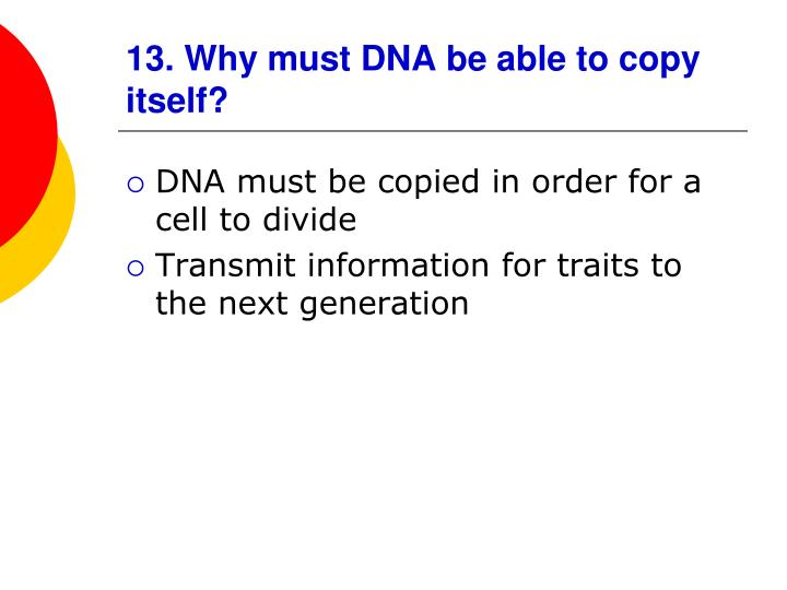 13. Why must DNA be able to copy itself?