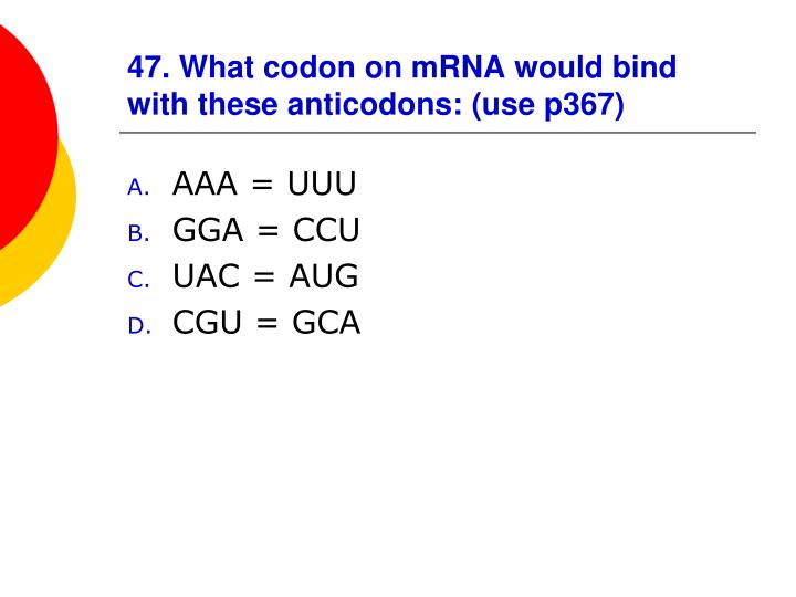 47. What codon on mRNA would bind with these anticodons: (use p367)