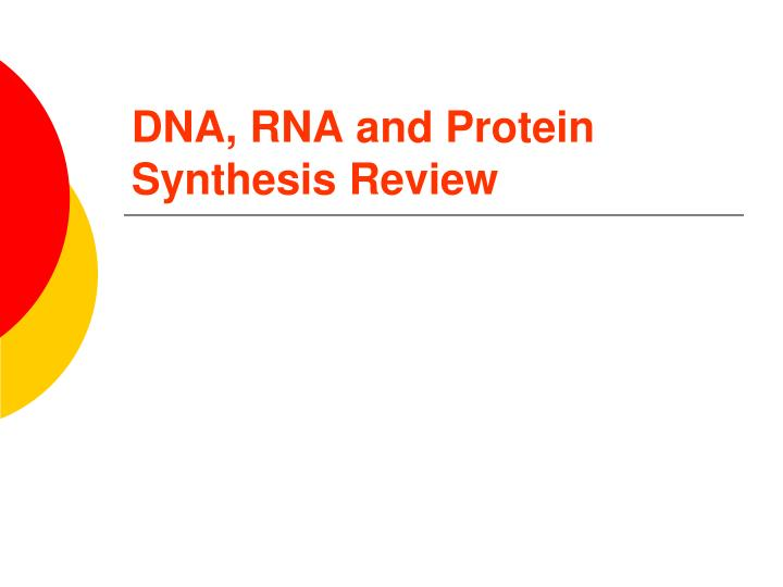 Dna rna and protein synthesis review