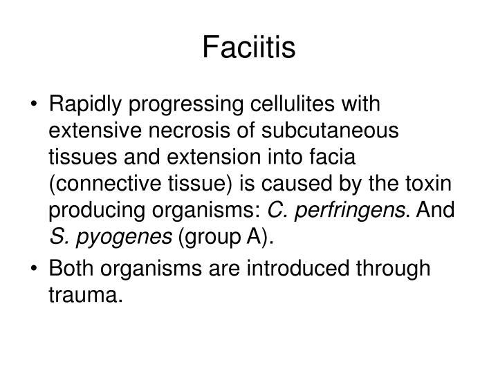 Faciitis