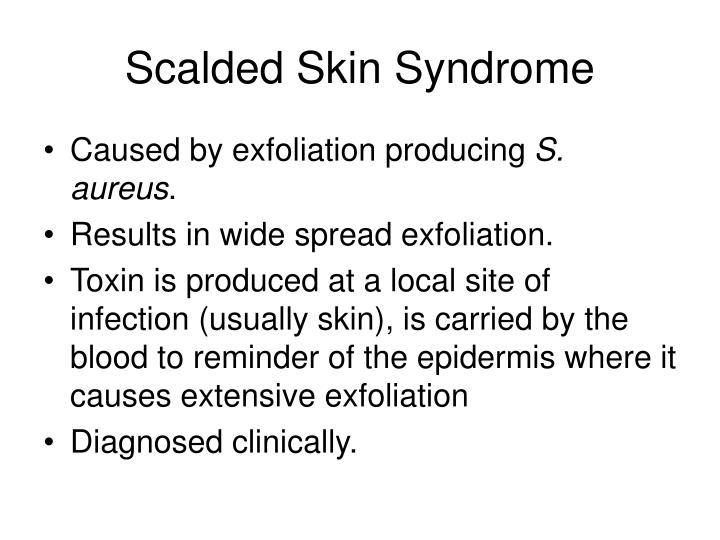 Scalded Skin Syndrome