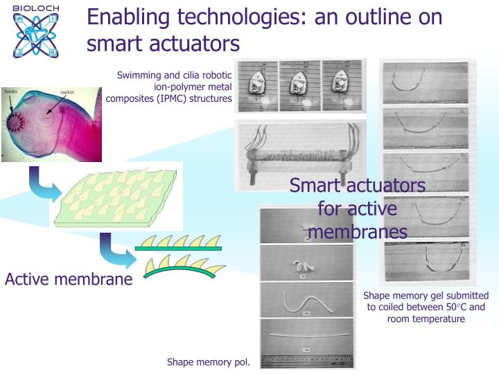 Enabling technologies: an outline on smart actuators