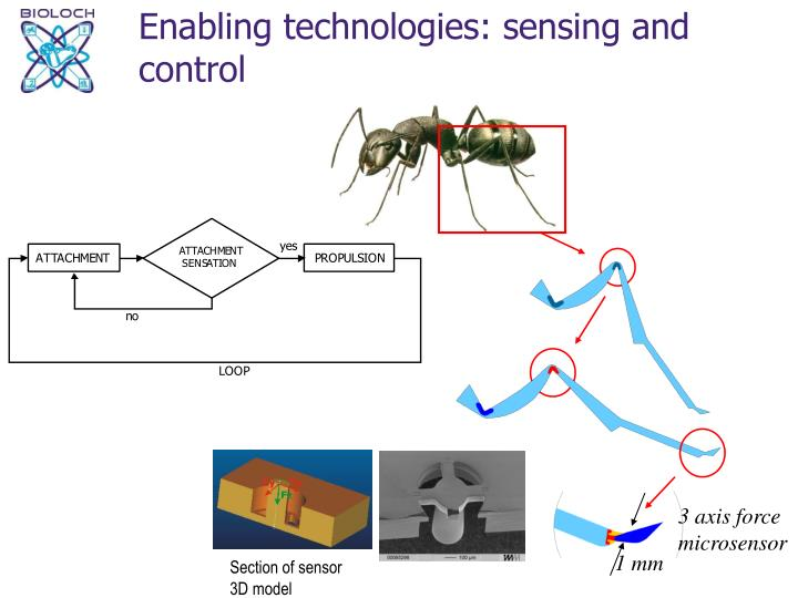 Enabling technologies: sensing and control