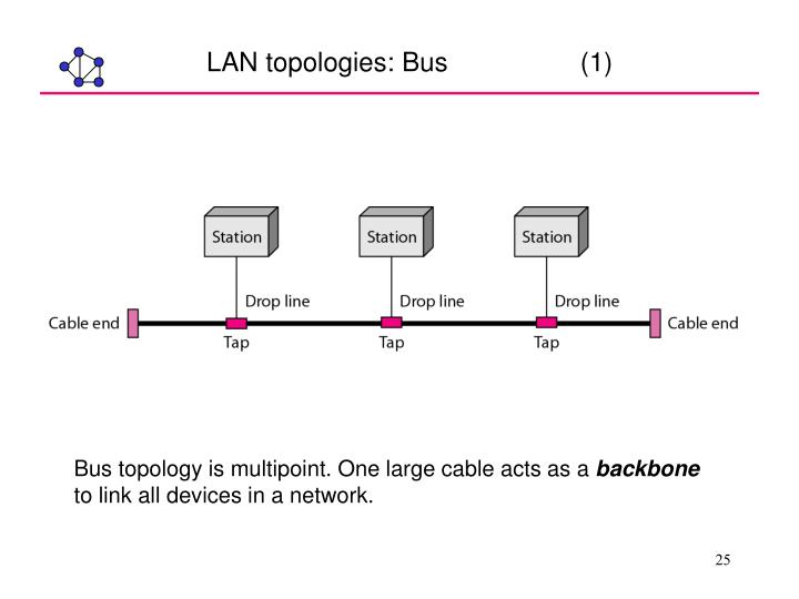 LAN topologies: Bus                  (1)