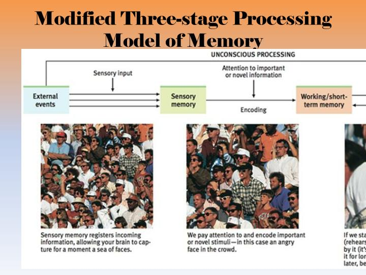 Modified Three-stage Processing Model of Memory