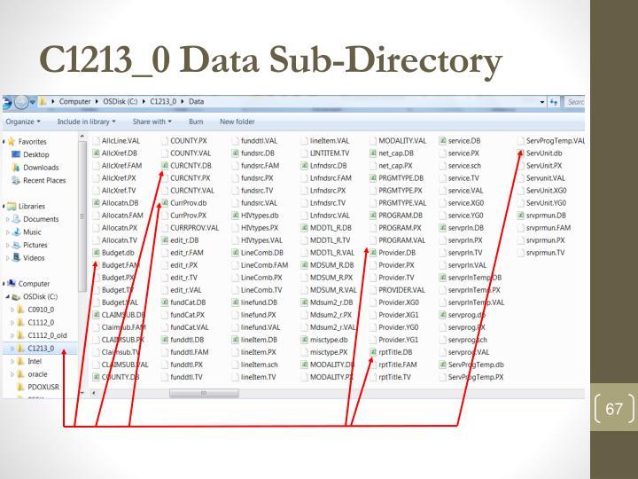 C1213_0 Data Sub-Directory