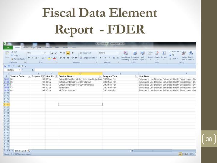 Fiscal Data Element
