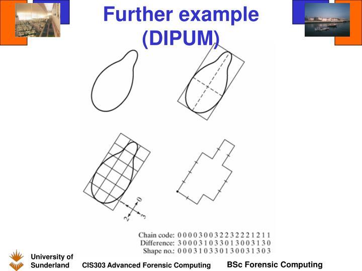 Further example (DIPUM)