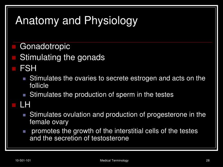 Anatomy and Physiology