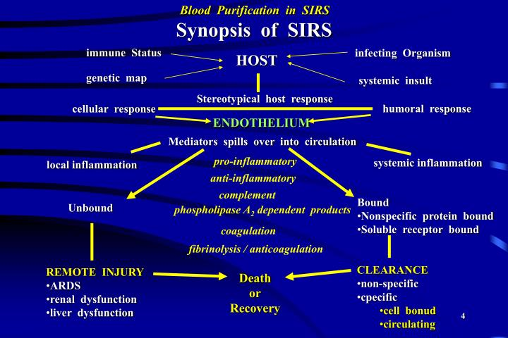 Synopsis  of  SIRS