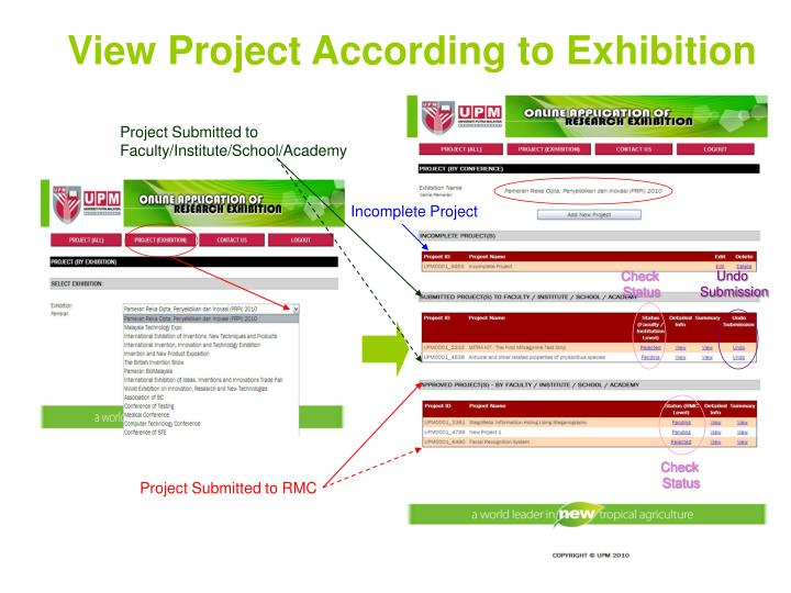 View Project According to Exhibition